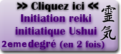 Initiation reiki initiatique segond degré par Paul Wagner