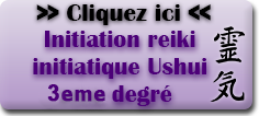 Reiki initiatique 3eme degré de Paul Wagner